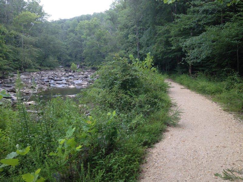 Difficult Run alongside the Difficult Run Trail