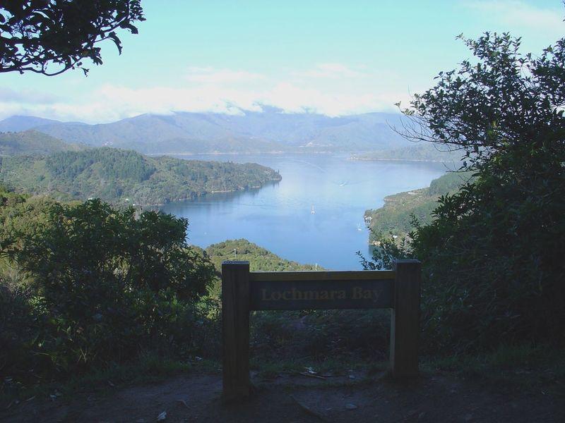 View of Pelorus Sound