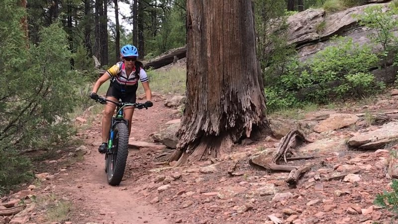 Awesome smooth singletrack