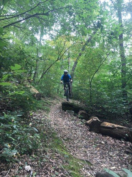 Natural rock drop on Miner's Rock Trail