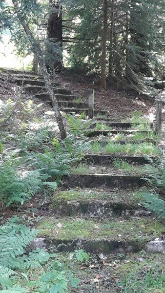 Charles Creek side trip - Old prison steps.  Ride 'em if you feel lucky like Cool Hand Luke.