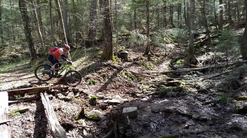 South Fork gully crossing, it's better without the bridge.