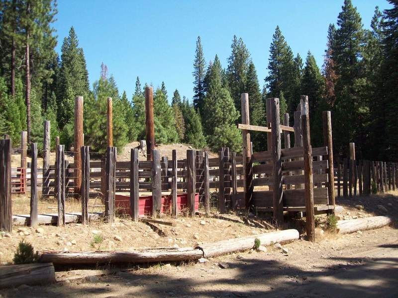 Cow Camp Corral
