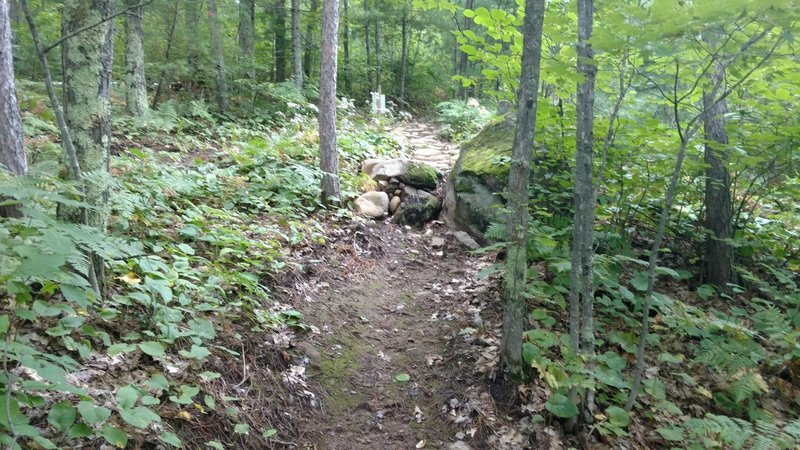 The newest trail section at Mt. Ashwabay makes heavy use of rocks to protect the trail and add interest.