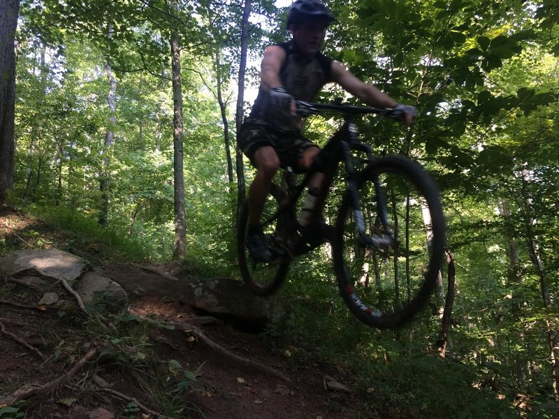 RJ Roush ripping down Faceplant; an iconic section of trail that has made Eleanor Park famous to many mountain bikers around the region.
