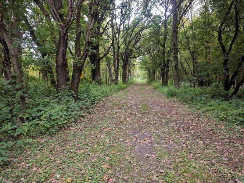 start of Mdewakantun Trail.