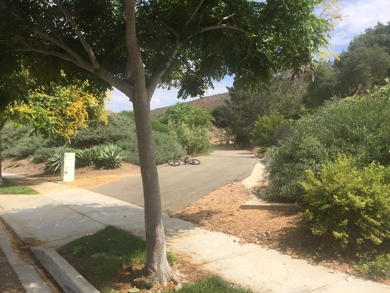 Trailhead on Sitio Salvia