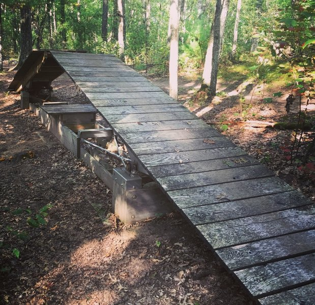 The amazing double teeter-totter on the black trail.