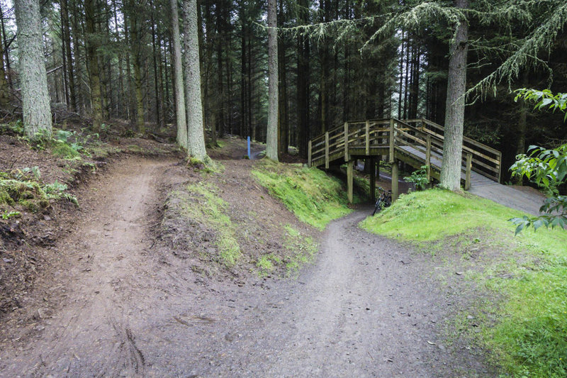 You could get lost in the maze of trails at Glentress, except that they are so well marked.