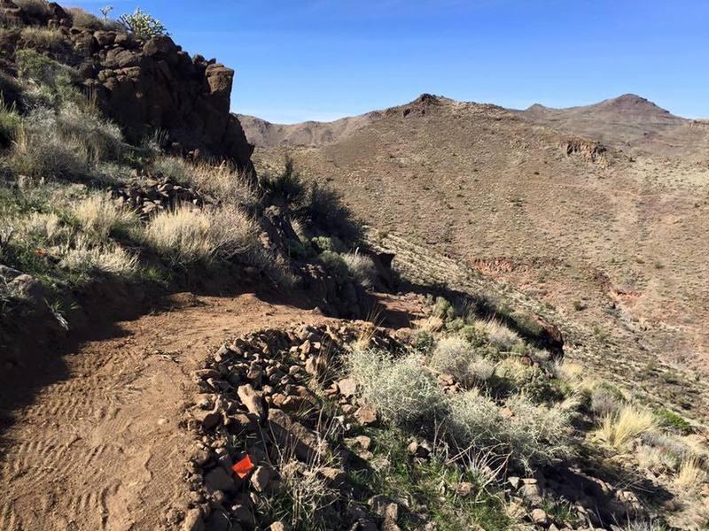 Highest point on Rattler Trail.