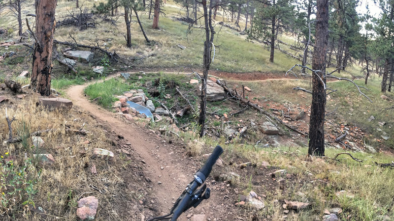 Nice, easy flow throughout this trail