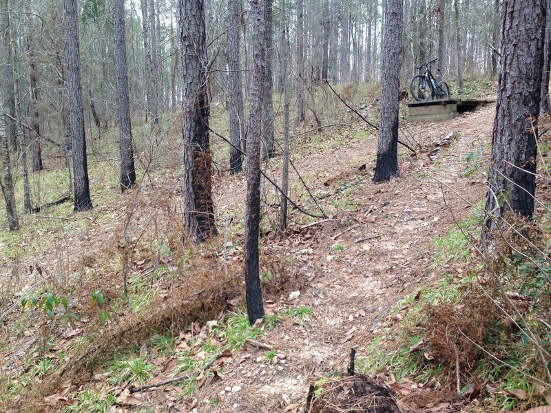 This is the SkiJump. It doesn't seem difficult but it is hard to jump going down hill on a XC bike...