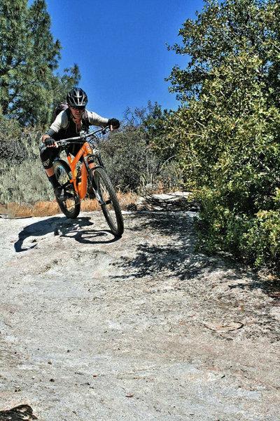 Droppin' in near the top of Dutch Flat trail.