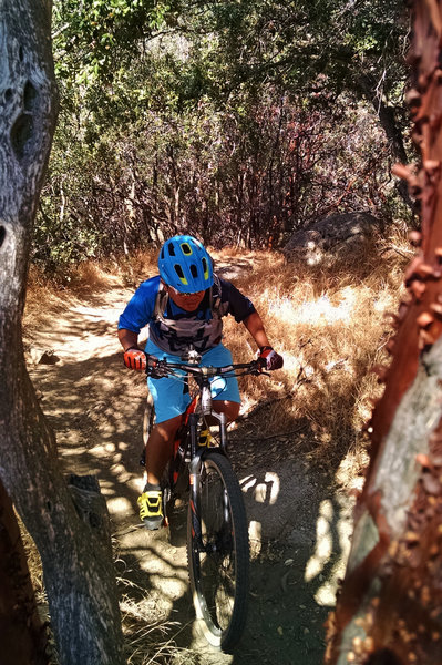 One of many technical sections on Just Outstanding trail.