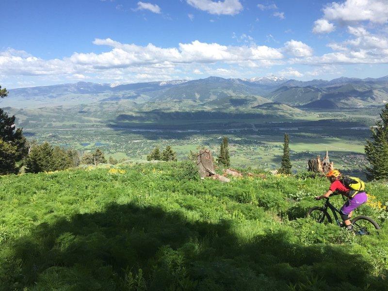 Rider: Kate Pearce. Photo: Collin Wheeler. Phillips RIdge, WY