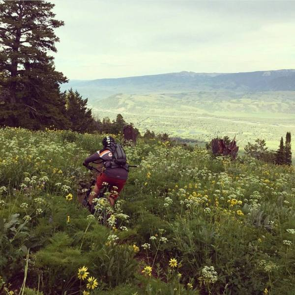 Phillips Ridge in Bloom. Photo: Ride The Tetons. Rider: Collin Wheeler