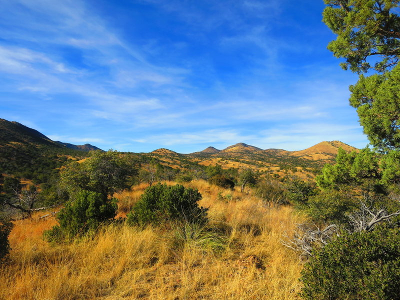 Foothills of the Santa Rita Mountains where the trail runs.