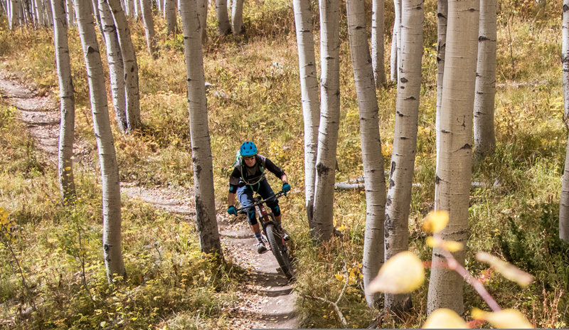 Gunsight is one of the most beautiful, flowiest trails in Crested Butte!
