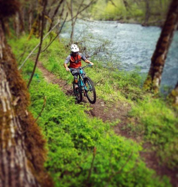 Wheelie along Salmon Creek