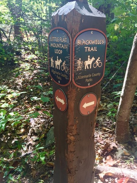 The bears love using trail markers as a scratching post.