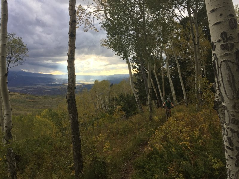 Riding through aspens as a massive thunderstorm approaches.