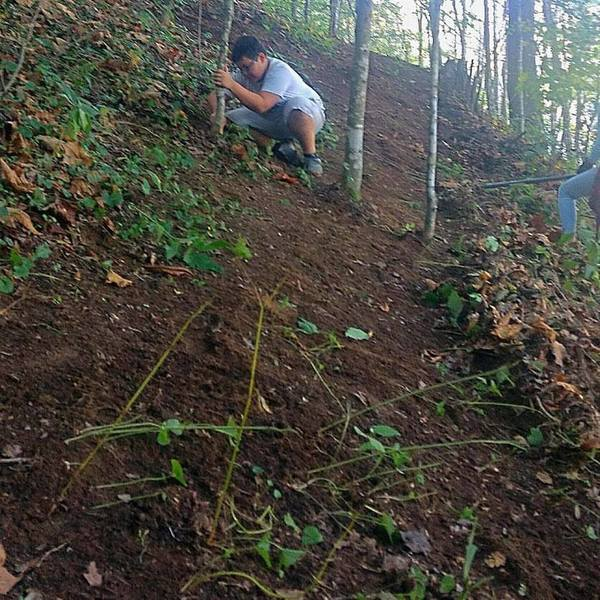 Ashe County Middle School Bike Club Trail Building Day