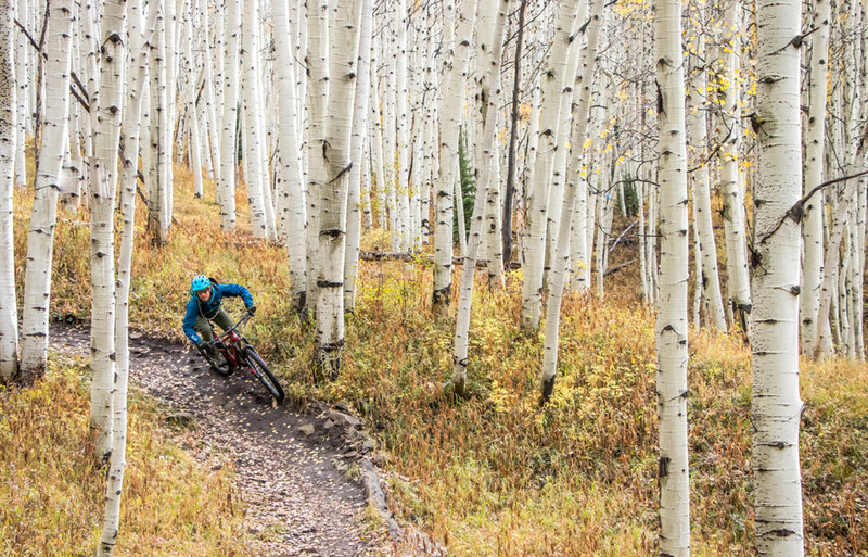 The aspens on Lupine and Gunsight can't be beat.