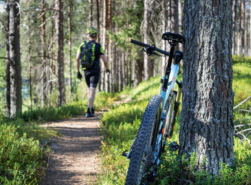 Sininen Saavutus Trail offers a plenty of flowy sections. Photo: Metsähallitus