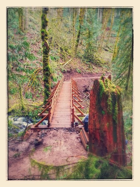 Brand new Link'n'Pin bridge over Genzer Creek on Shoofly - Completed by NW Trail Alliance volunteers May 2017