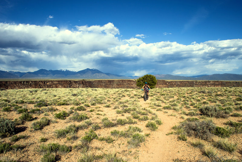 Along the West Rim Trail there's lots of side trails that lead to awesome views of the Rio Grande Gorge and Taos Range, and a few of the sparse trees to cool down in the shade on a hot day