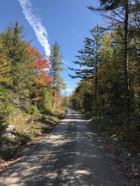 Climbing on Canaan Loop road