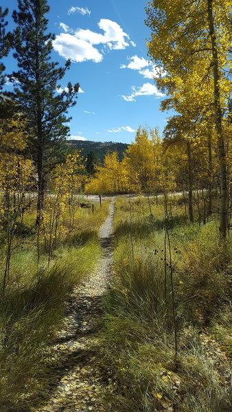 Path dead end into Sundance Circle
