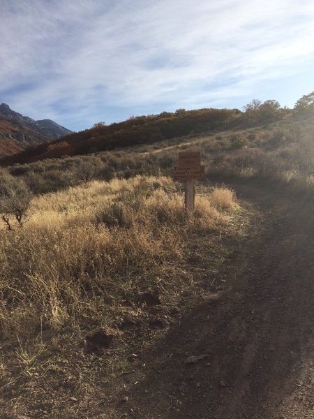 Peakview trail