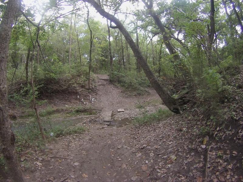 Another creek crossing on Loop 7.
