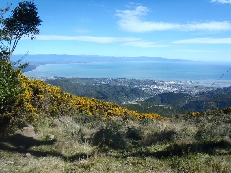 Nelson City and Tasman Bay from the top of Fringed Hill.