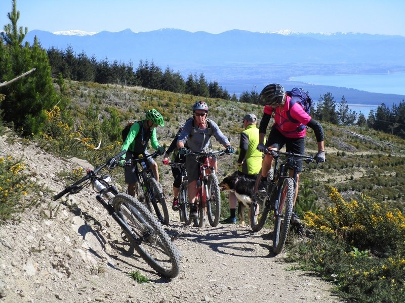Climbing Widdershins Trail to the top of Involution with Tasman Bay in the background.