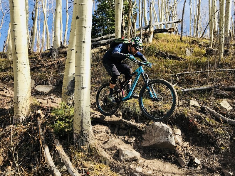 Riding a short technical section lined with rocks & roots!
