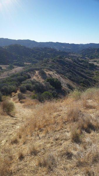 Top of U-Capa Trail. Looking South.