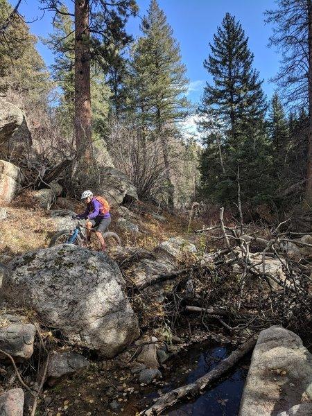 Plenty of creek crossings to be had along Lion Gulch