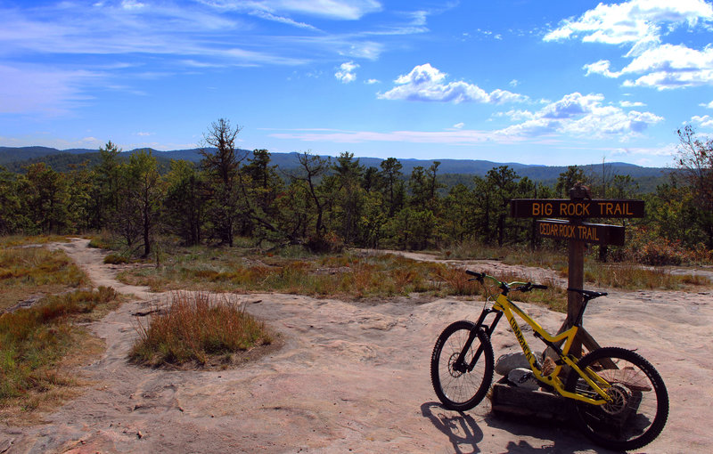 At the top of Big rock trail, Dupont.