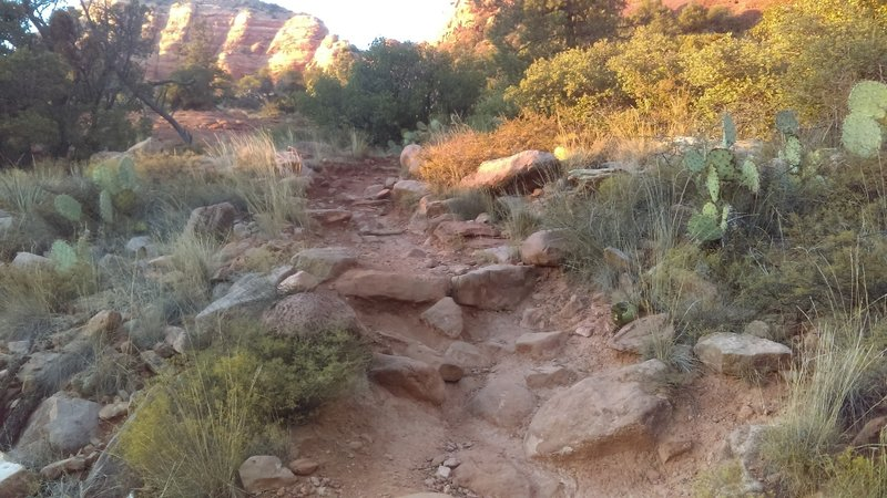 Typical Chapel trail.  Fun in spots, but very technical