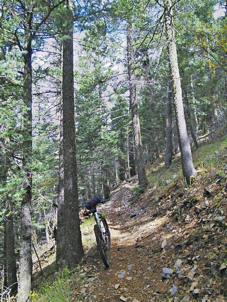 Some sections of Rim Trail have a steep cross-slope.