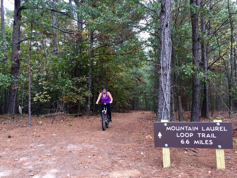 Entrance to the Mountain Laurel Loop Trail.