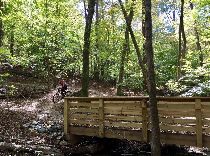 One of the many wooden bridges on the Mountain Laurel Loop Trail.