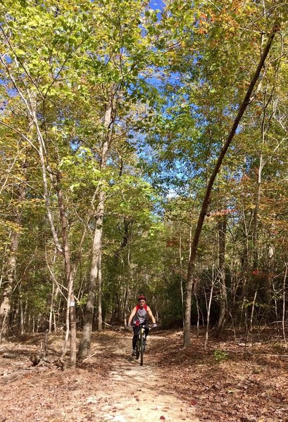 Riding the Mountain Laurel Loop Trail at the end of October.