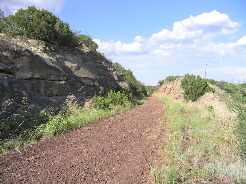 Image of trail, most of the trail looks similar to this.