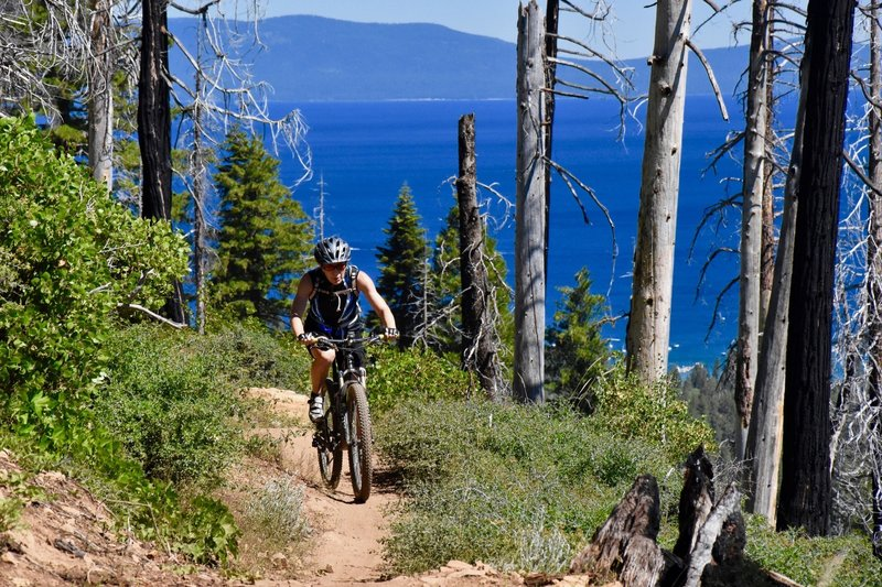 The climb up Tahoe Mountain from the lake side is a grind, but the views take your mind off the effort.