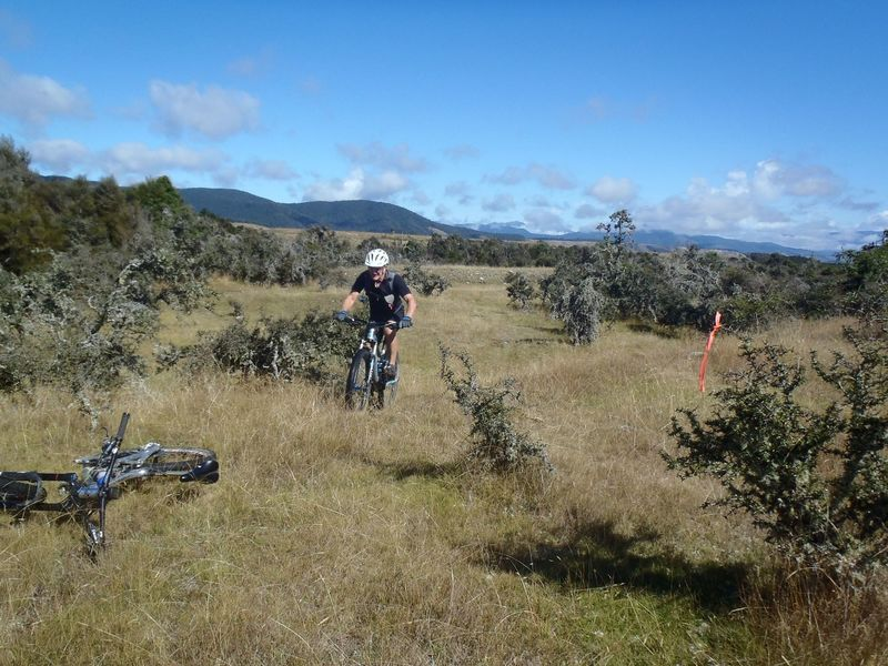 The western end of Rattler Rim track wanders through grassy flats amongst scattered matagouri bushes