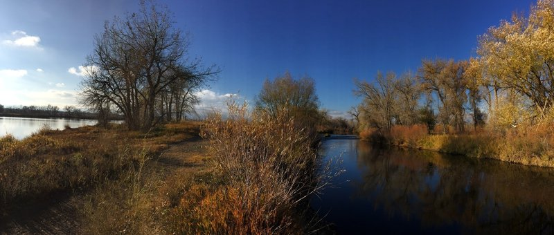 Trail running between the Big Bass Pond and Cache la Poudre River.