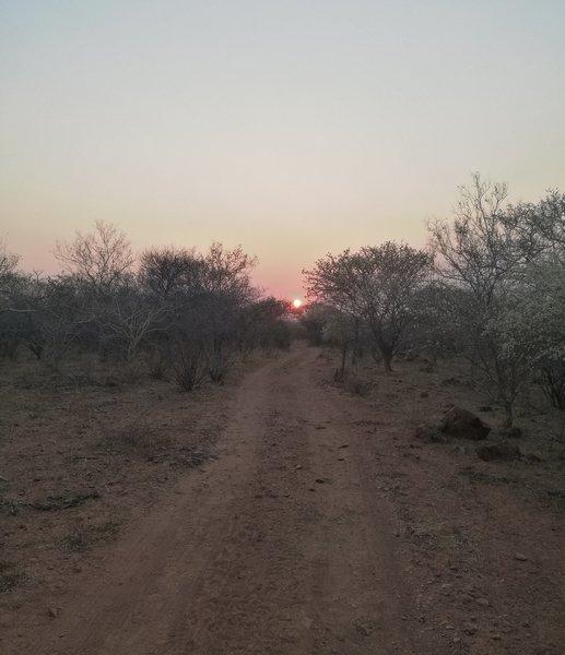 Jeep track heading down towards Bokaa dam at sunrise.